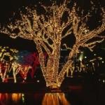 Гирлянды на деревья Клип-лайт