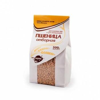 Зерно для проращивания Пшеница отборная, 500 гр пачка