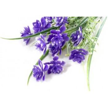 Цветок Дельфиниум (003826)
