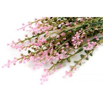 Цветок Вереск (003835)